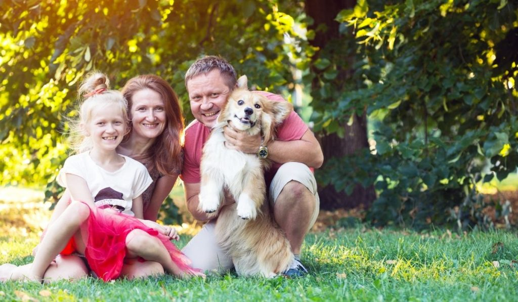 family with corgi on the lawn on a summer day